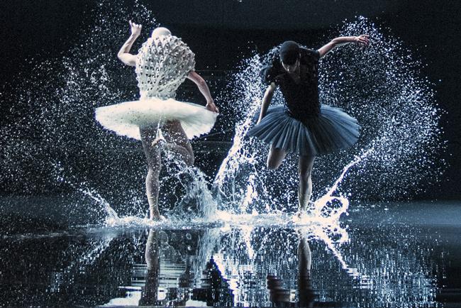 San Francisco Dance Film Festival Films 2017, A Swan Lake, Alexander Ekman