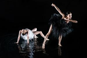 San Francisco Dance Film, Instar, Director: Mathieu Gremillet, Choreographer: Juanjo Arques