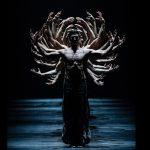 Four Choreographers of our Time at the Paris Opera: Thierrée / Shechter / Pérez / Pite