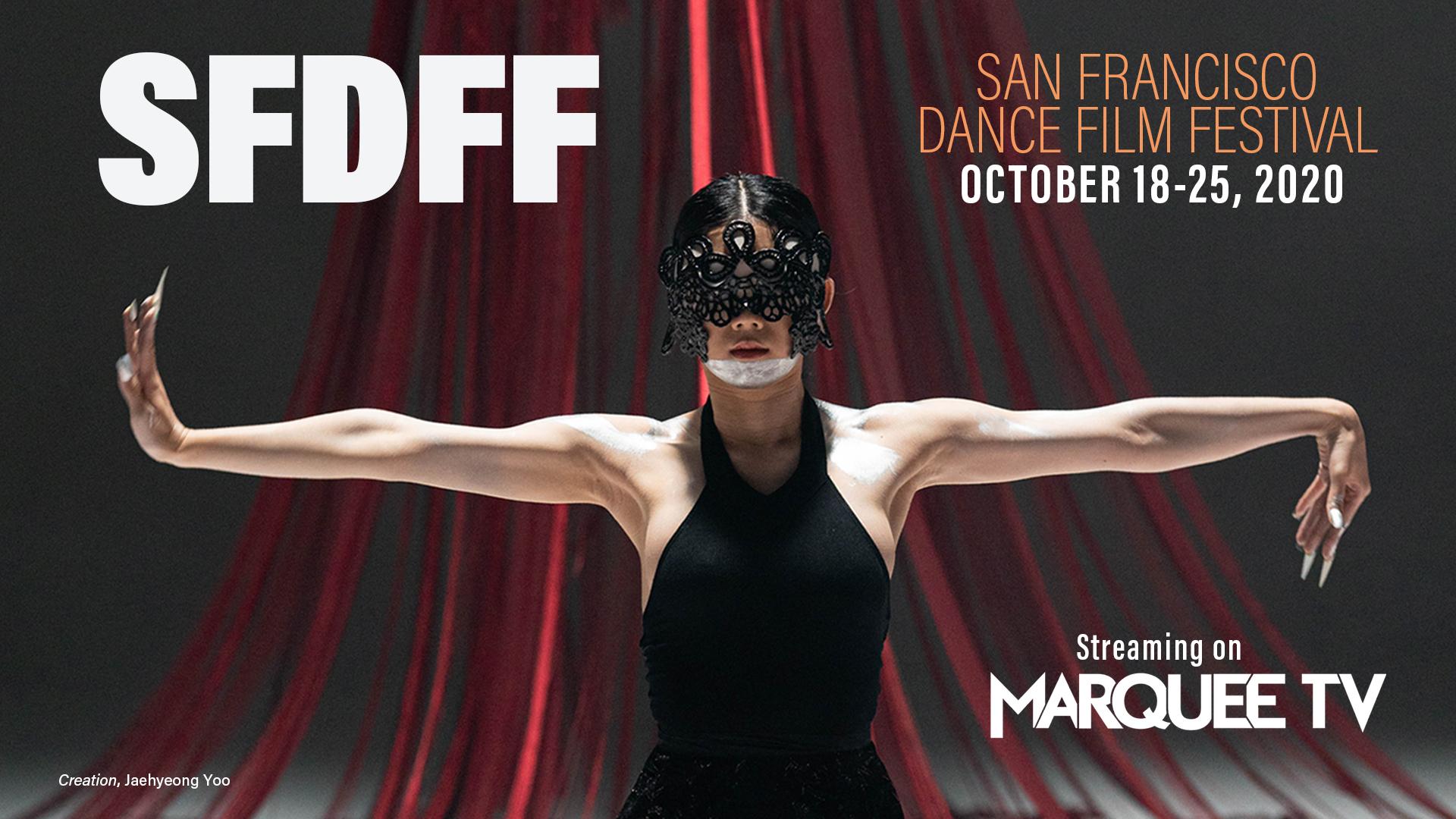 2020 SFDFF Festival banner image