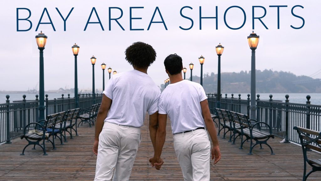 Bay Area Shorts Program